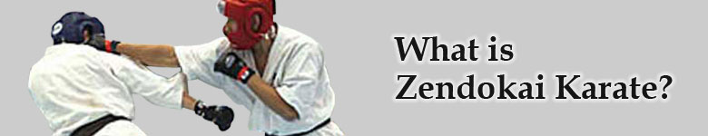 What is Zendokai Karate?