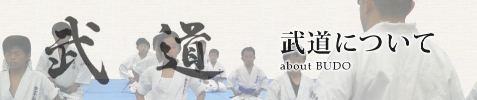 武道について