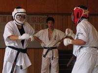 2013全日本RF武道空手道チャレンジカップ&禅道会茶帯トーナメント